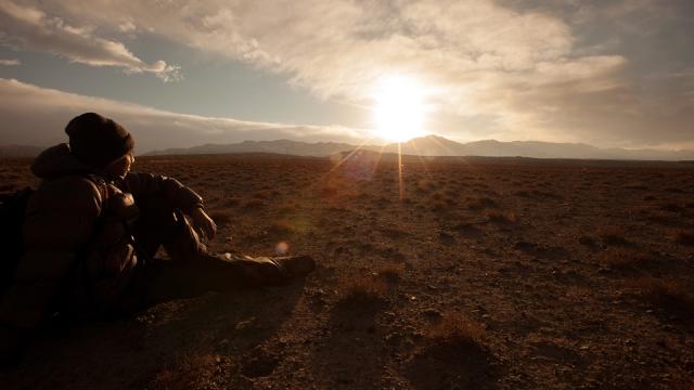 admiring the last light of the sun