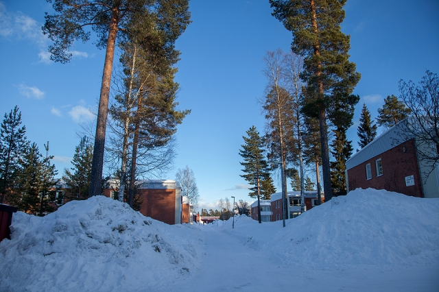 deep snow in housing areas in Skelleftea