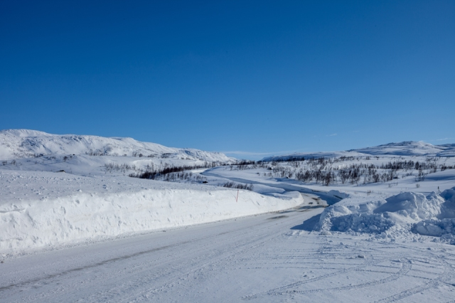 the tundra on Norwegian side