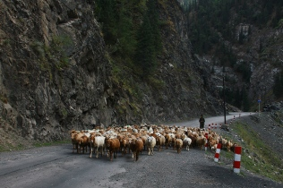Heavy Traffic in the Tian Shan