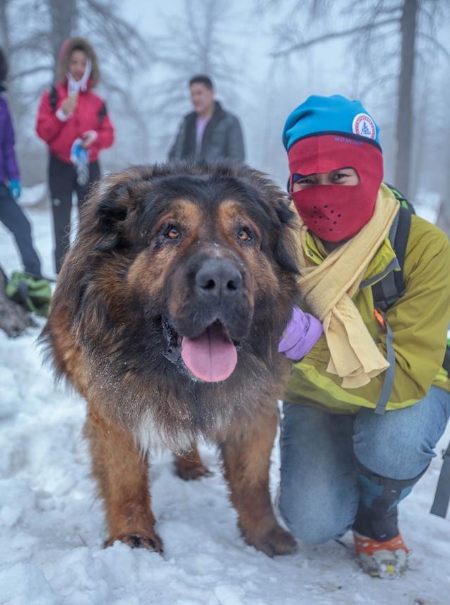 a Mongolian dog... badass!