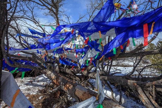 Shaman's prayerflags