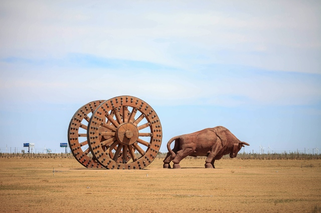 brown bull near Sonid Youqi