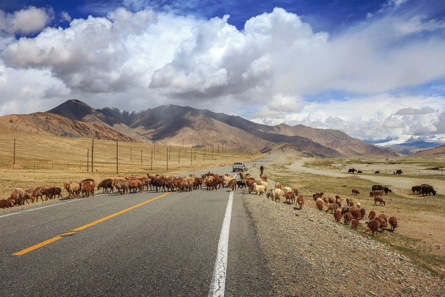 the Pamir version of bad traffic