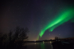 aurora17