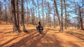 Riding through the forest on the west coast of Khovsgol Nuur, Northern Mongolia
