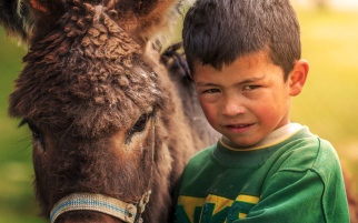 A Tajik boy and his donkey