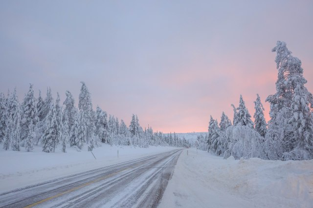 the long drive through the Finnish forest